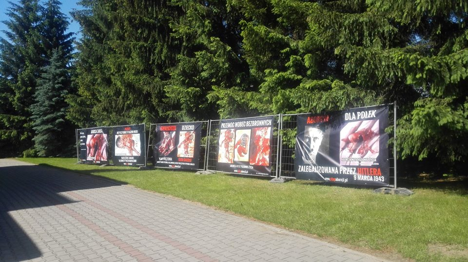 Coraz więcej wystaw i plakatów!